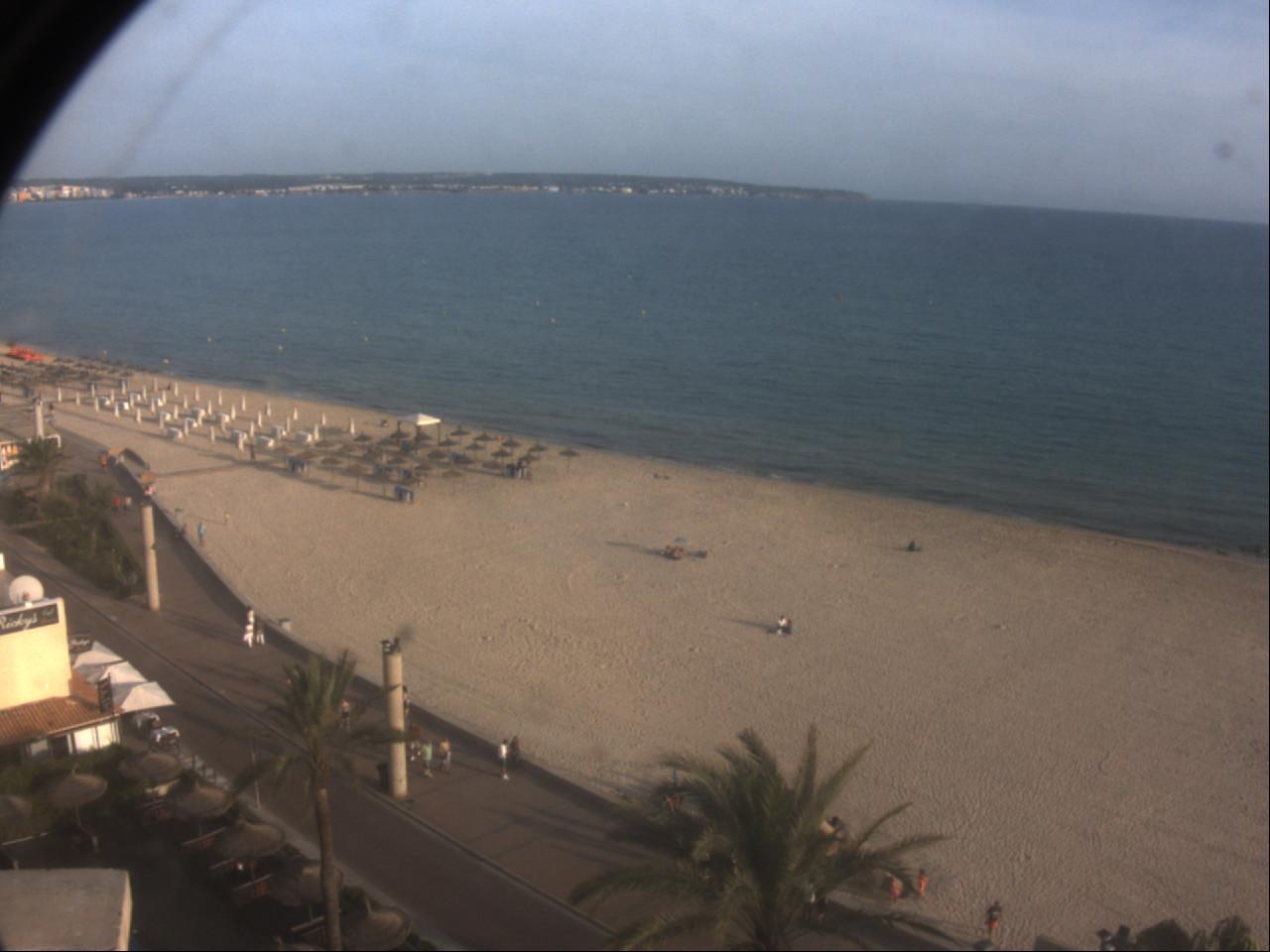 Hafen Mallorca Webcam